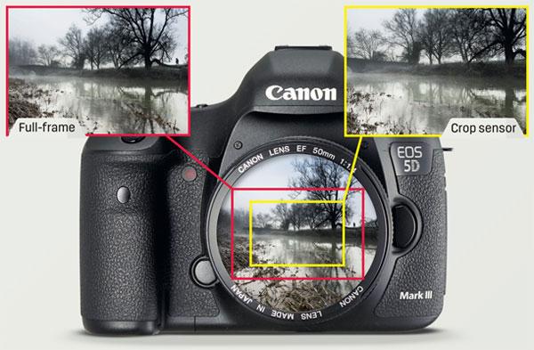 ضریب برش در دوربین های دیجیتال