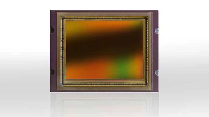 یک نمونه از سنسور فول فریم