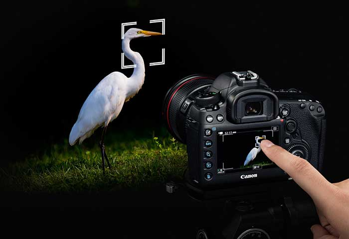 دوربین 5D Mark IV