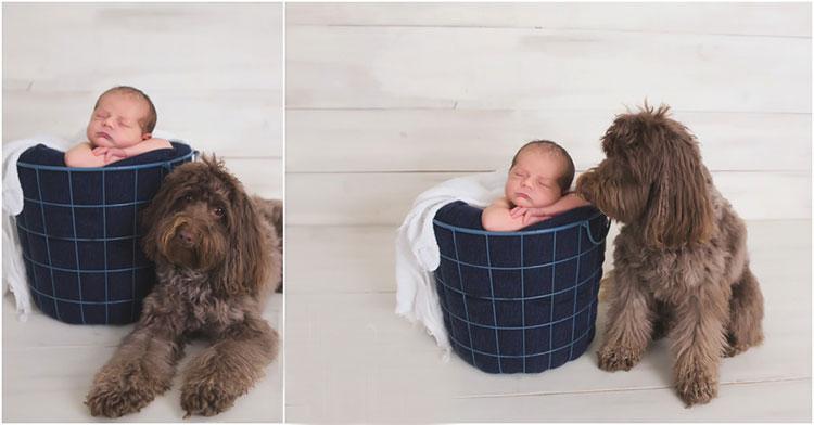 ۵۰ ایده عکاسی از نوزاد در منزل و آتلیه